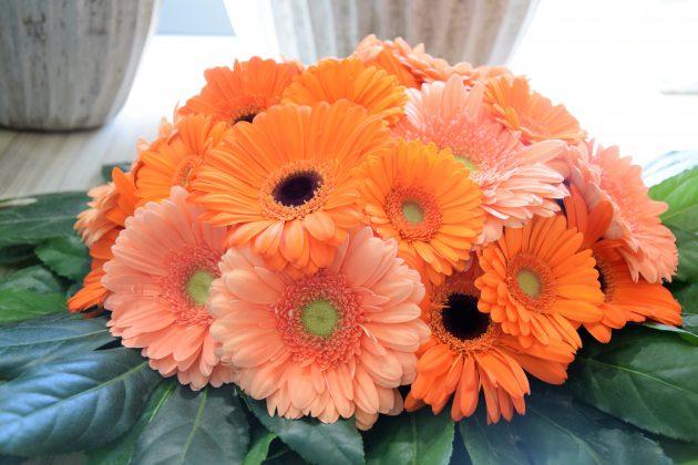 Livraison de fleurs - Bouquet Theodore 2